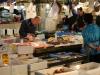 tsukiji fish