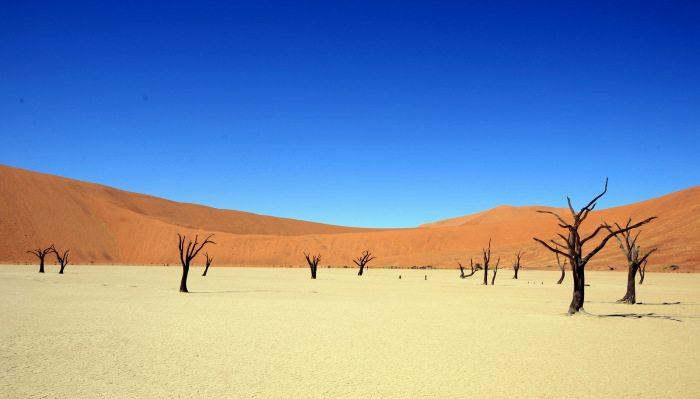namibia 8