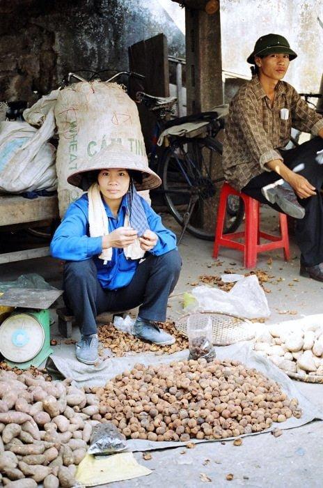 vietnam - alp boneval