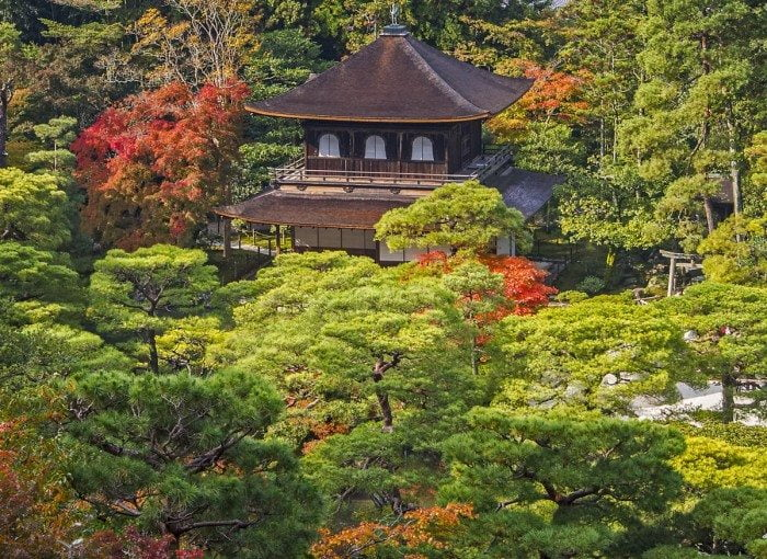 Beautiful display of fall color (koyo) at Ginkakuji Temple, Kyot