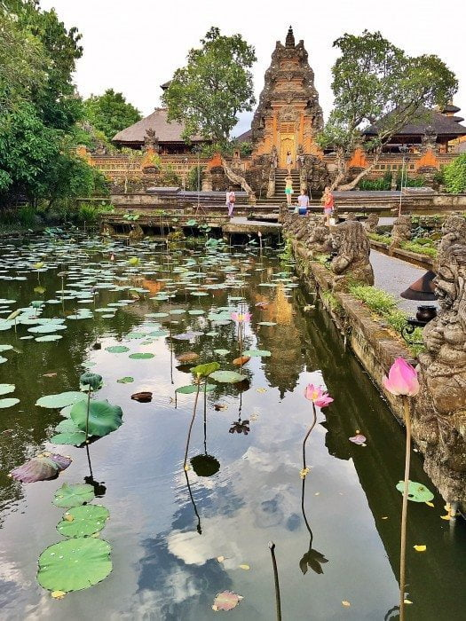 lotus cafe ubud